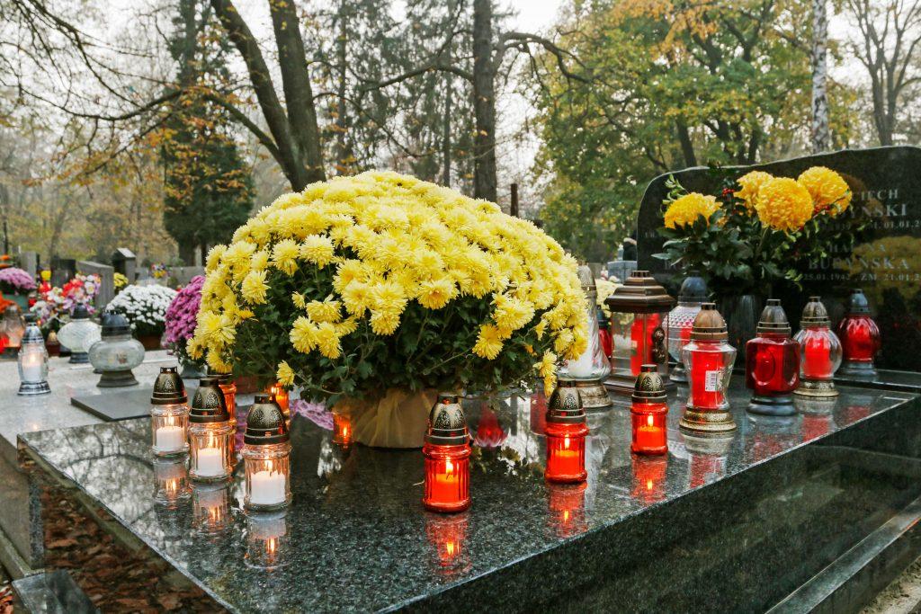 kapu tvarkymas Lietuvoje